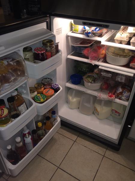 The main fridge.